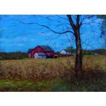 Upper Bucks County Farm