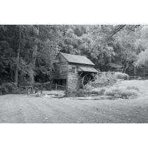 Cuttalossa Farm by Denise Marshall