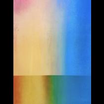 Miami Rainbow Wall by Denise Marshall