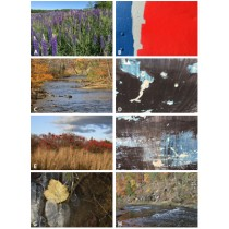 Photography Notecards by Denise Marshall